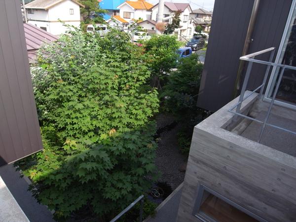 籠原の家中庭