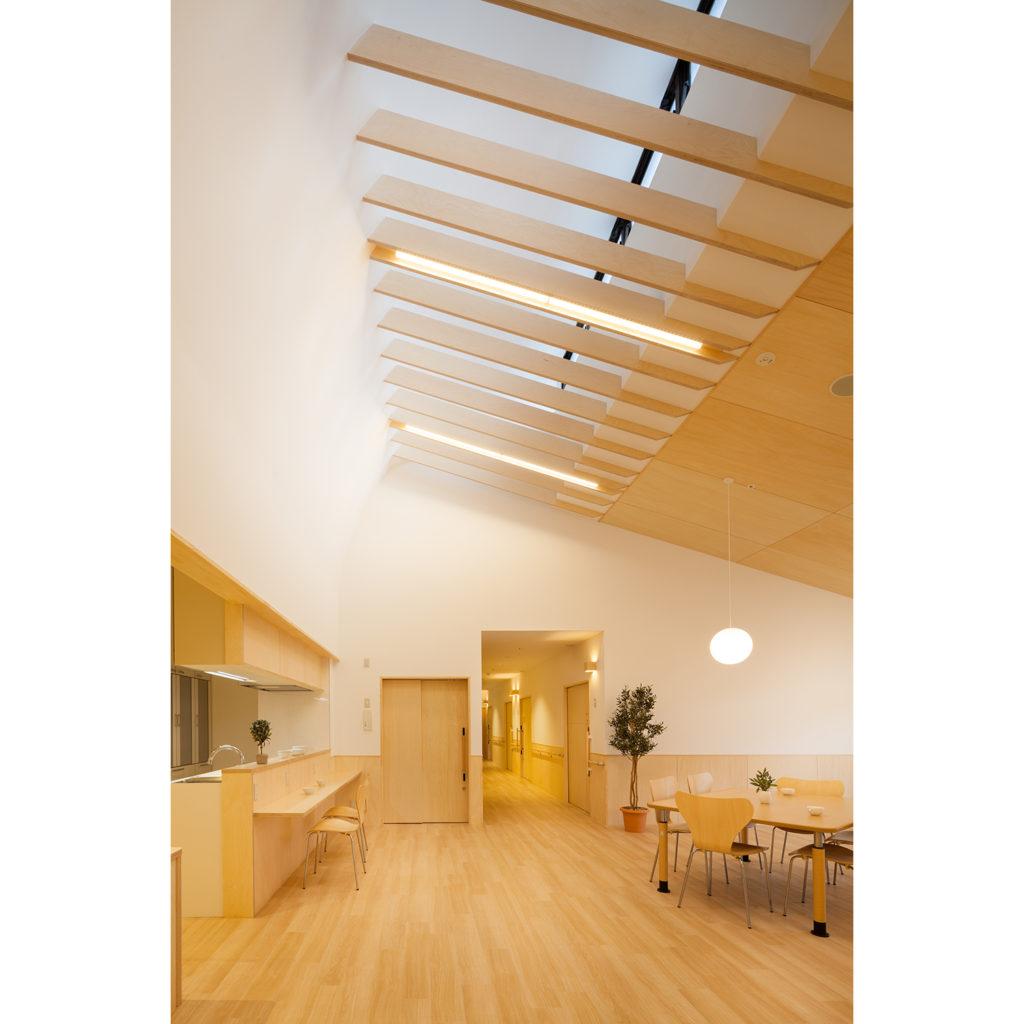 ロシアンバーチ合板の折り上げ天井